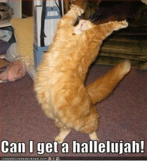 can-i-get-a-hallelujah